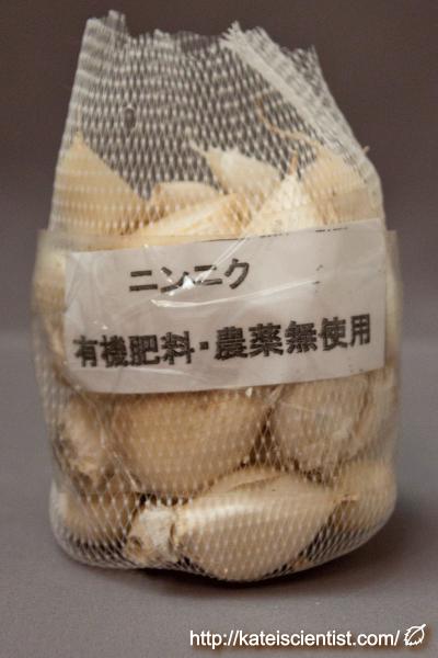 garlic_yamada-2016summer_st01