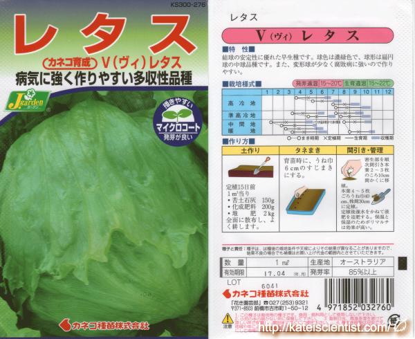 v-lettuce_2016summer_st01